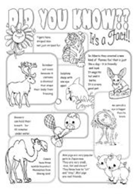 printable animal fun facts interesting facts about animals