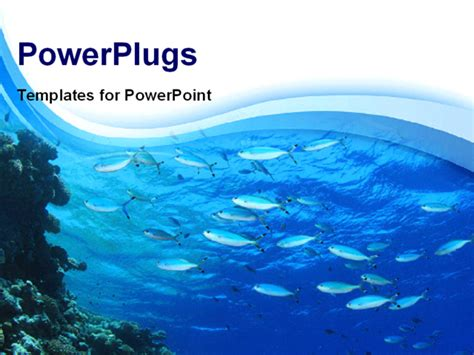 fish powerpoint template powerpoint template fishes swimming in blue water with