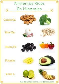 alimentos que contienen sales minerales 191 qu 233 sabemos de los minerales 161 salud pinterest