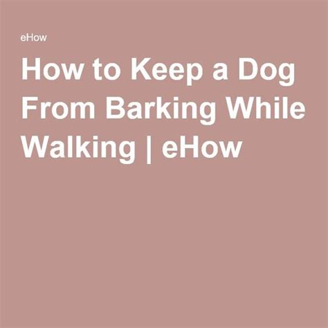 how to keep a from barking how to keep a from barking while walking dogs barking and barking