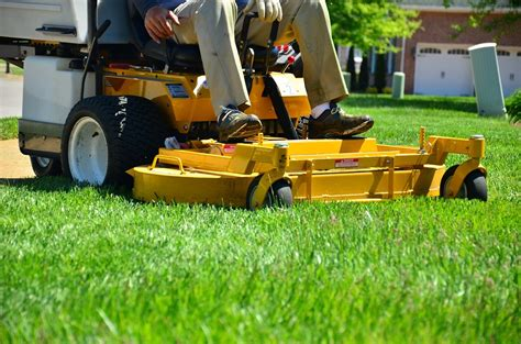 difference between lawn care and landscaping green t