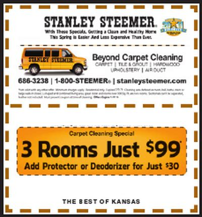 stanley steamer deals gift ftempo