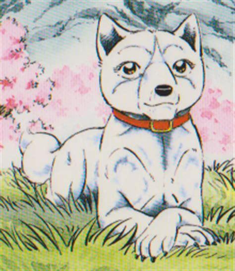koyuki | ginga wiki | fandom powered by wikia
