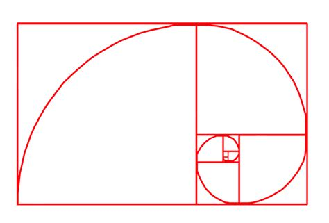 finally got how to create spiral number pattern program mathematical patterns in plants fibonacci and the golden