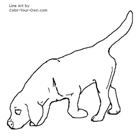 Beagle Coloring Pages Sketch Page sketch template