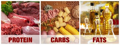 carbohydrates fats and proteins tricks to hit your macro ratios in myfitnesspal