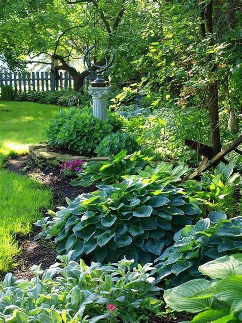 Shady Backyard Ideas Hosta And Shade Backyard Ideas How To Spruce Up The Sewer Mound Gardening Pinterest