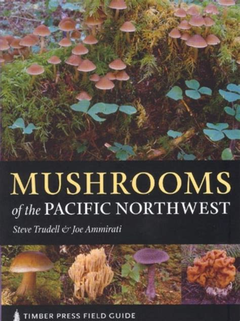 Vegetable Gardening In The Pacific Northwest Vegetable Gardening In The Pacific Northwest Northwest