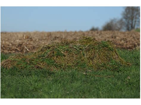 Layout Blind Winter Wheat Cover | avery killer ghillie layout blind cover kit fits migrator