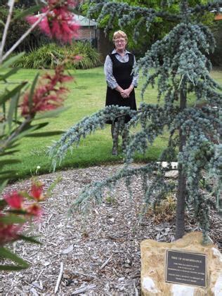 Picton Botanic Gardens Picton Botanic Garden Road Traffic Victim Memorial Plaque Stolen Dailytelegraph Au