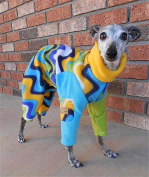 Töff Total by 18 Times Italian Greyhounds Were Total Fashionistas