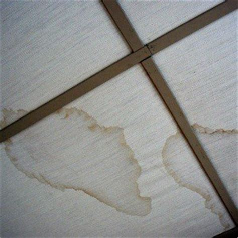 fabric ceiling has water stains thriftyfun