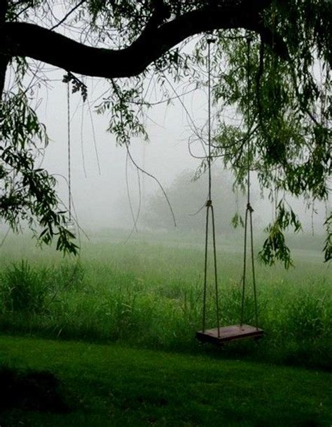 swing country 10 best images about country swings on pinterest tire