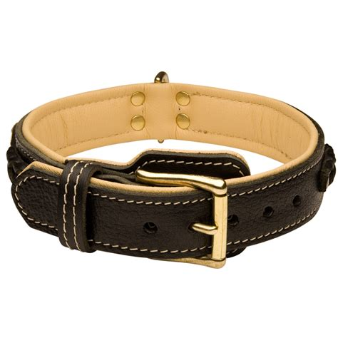 comfortable collars get made padded leather boxer collar braided decorations