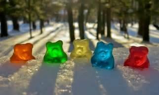 gummy pot colorado will ban cannabis gummy bears leafly