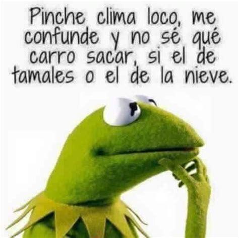 Memes De La Rana Rene - a veces la ranita pinterest