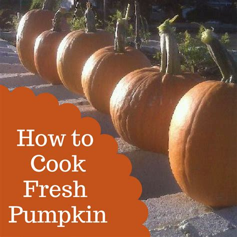 how to cook pumpkin and eat it too city girl farming
