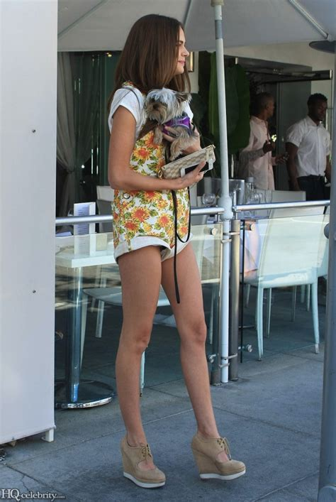 xenia deli walks  dog  short shorts celebritybuzzer