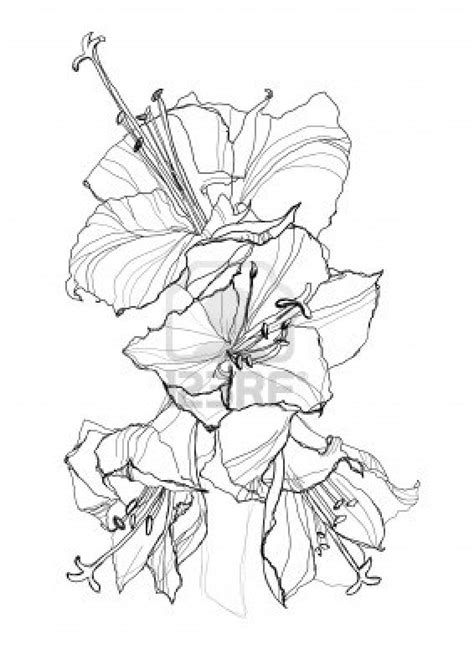 sunbeamflowers: flowers outlines