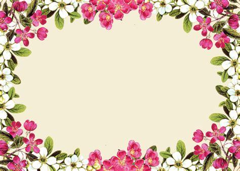 Frame Photo Meja Cantik Bunga Pink pink floral borders free digital flower frame png and flower frame journaling card