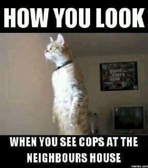 Are You Nosey by Cops At The S House Memes