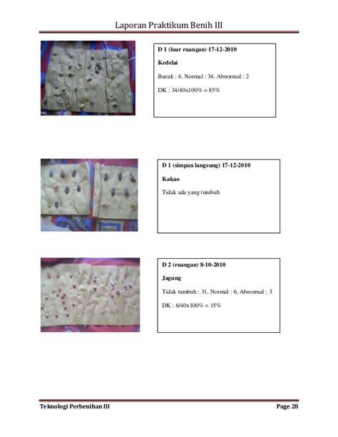 Benih Jagung Dk 979 makalah 57 makalah laporan praktikum