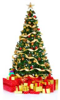 easy 101 5 christmas tree facts