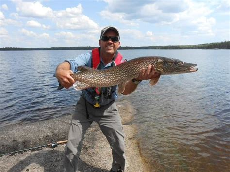 rugged outfitters inc trophy fishing for northern pike in woodland caribou provincial park picture of lake