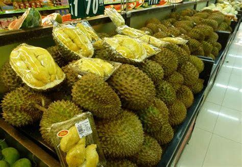 Bibit Durian Bawor Purworejo sentra pembibitan durian montong beranda