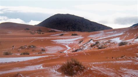 snow in desert snow falls in sahara desert town for the 1st time in more