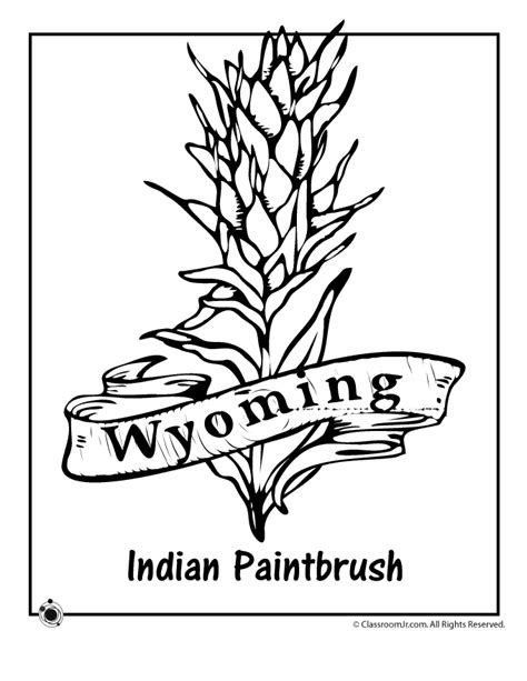 coloring page indian paintbrush wyoming state flower coloring page woo jr kids activities