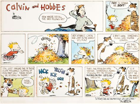 Search Calvin Calvin Hobbes Broadsheet Ie
