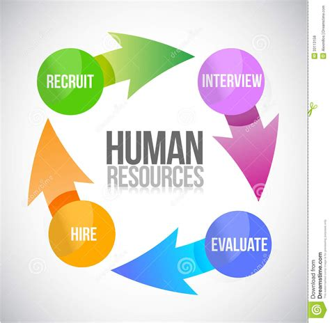 design free resources human resources color cycle illustration stock
