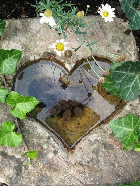 heart shaped in ground bird bath new house ideas