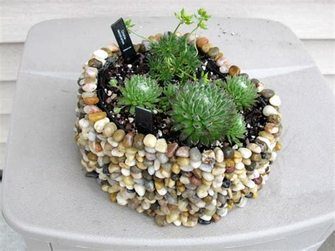 a pebble planter garden org