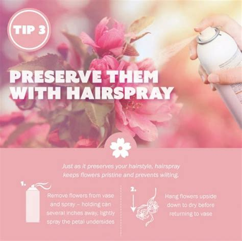 How To Keep Flowers In A Vase Alive Longer How To Keep Fresh Flowers Alive Instructions