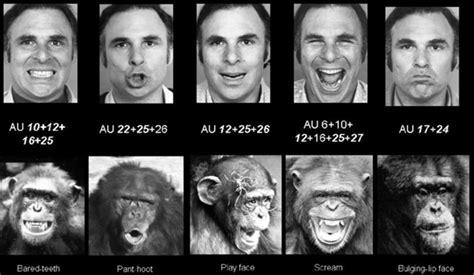 paul ekman test human lie detector paul ekman decodes the faces of