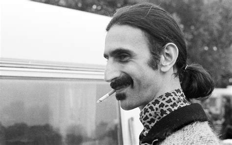 Zappa Free Search Frank Zappa Wallpaper Www Pixshark Images