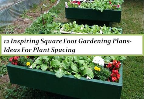 Garden Spacing - 12 inspiring square foot gardening plans ideas for plant