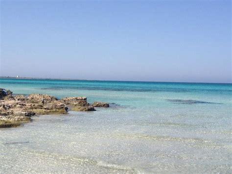 baia verde gallipoli spiaggia baia verde foto di spiaggia baia verde di