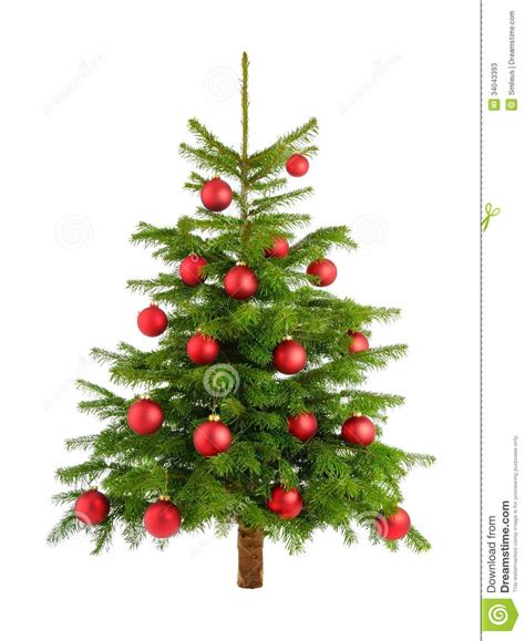 tree with baubles lush tree with baubles stock image image