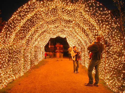Lights In Hermann Park hermann park lights