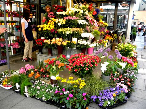 Flower Store by Flower Shop Part 2 Weneedfun