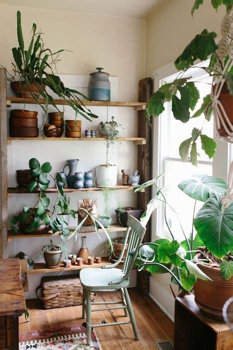 top  indoor garden design ideas inspire  small