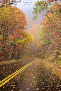 asheville fall colors 17 best images about blue ridge parkway asheville nc on