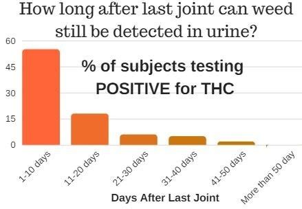 Pass Test In 24 Hours Without Detox by How To Pass A Urine Test For Marijuana In A 24 Hour Period