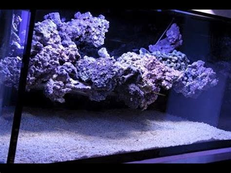 aquascape tutorial pillar aquascape in reef aquarium funnycat tv