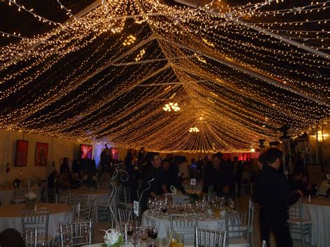 Twinkle Light Canopy Amazing Canopies String Lights Ideas Canopy String Lights