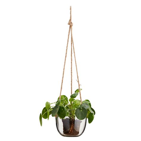 Hanging Glass Planter With Jute Cord By Out There Glass Hanging Planters
