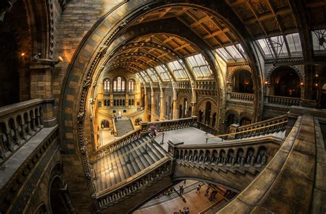 design museum london facts natural history museum london by nickhighfields on deviantart